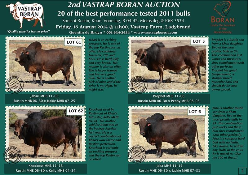 2011 Bulls (pg 2)