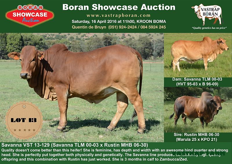 Savanna VST sold to B. Hurwitz Farming for R46'000.