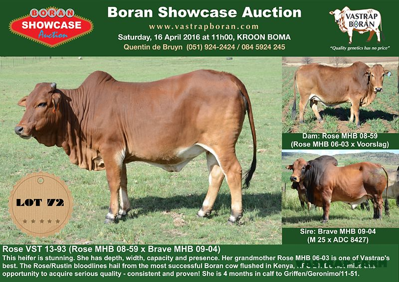 Sold for R45'000 to Kingdom Harvest Farming.