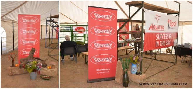 Thank you to Fanie Els (Vleissentraal) and our auctioneer Johan van der Nest for their hard work and support.