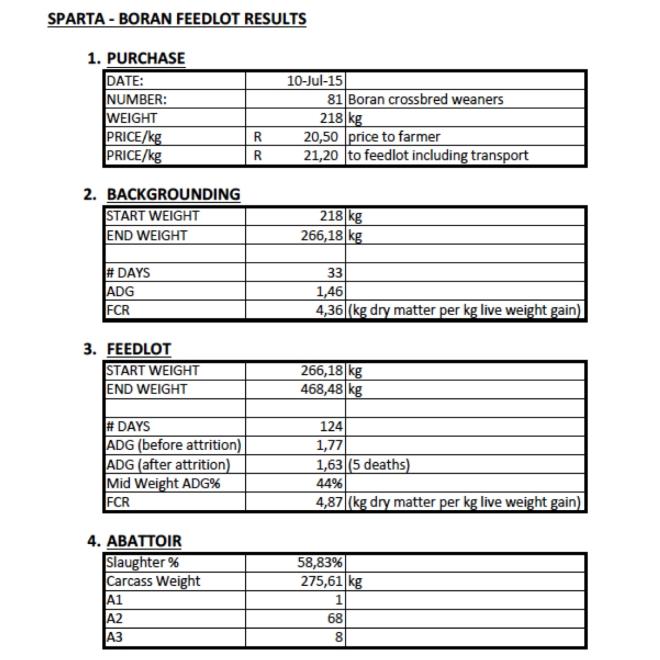 SPARTA Boran weaner feedlot results