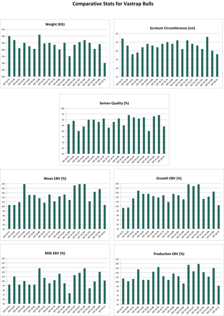 Bull performance charts.xlsx