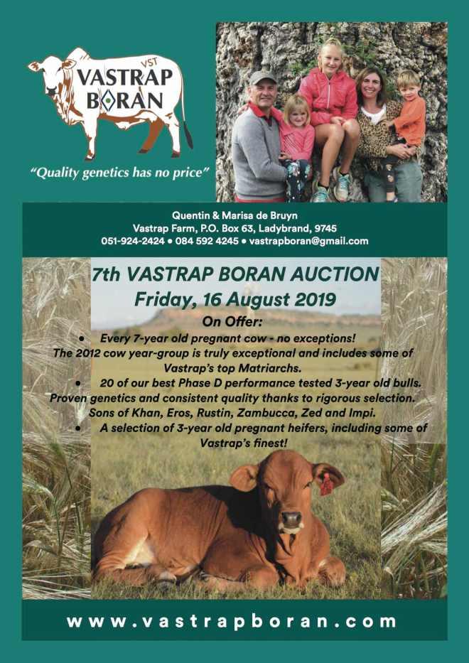 Vastrap Boran 2019-page 1